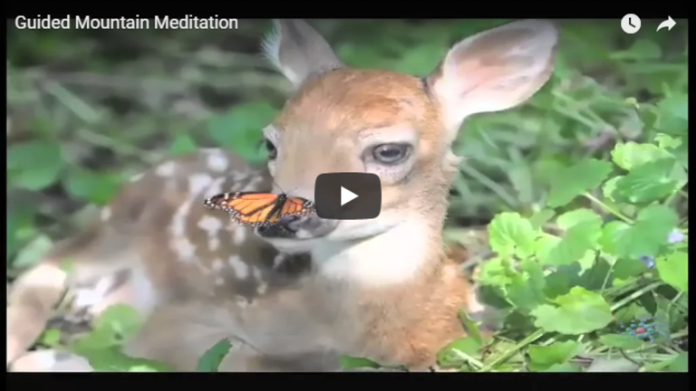 Meditation: Guided Mountain Meditation