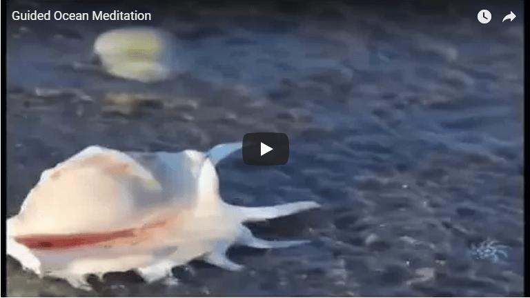 Meditation: Guided Ocean Meditation